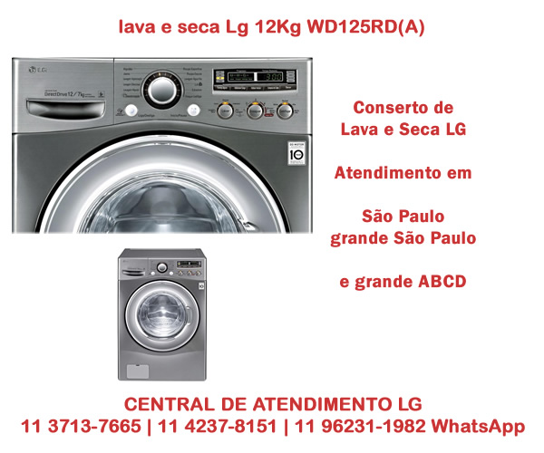Conserto lava e seca Lg 12Kg WD125RD(A)