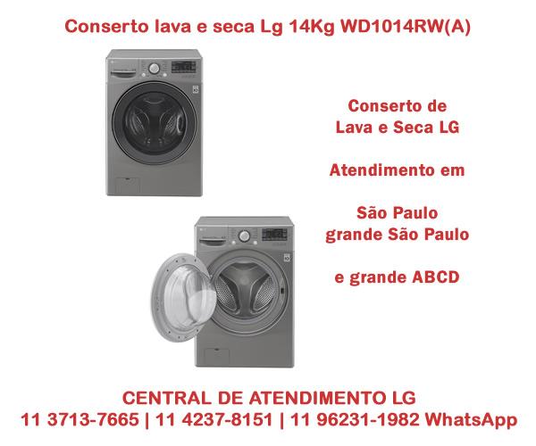 Conserto lava e seca Lg 14Kg WD1014RW(A)7